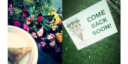 farmersmarket_logansquare_flowers